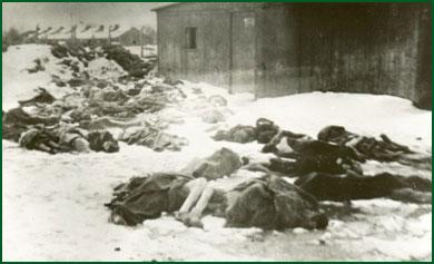 Döda människor i Auschwitz